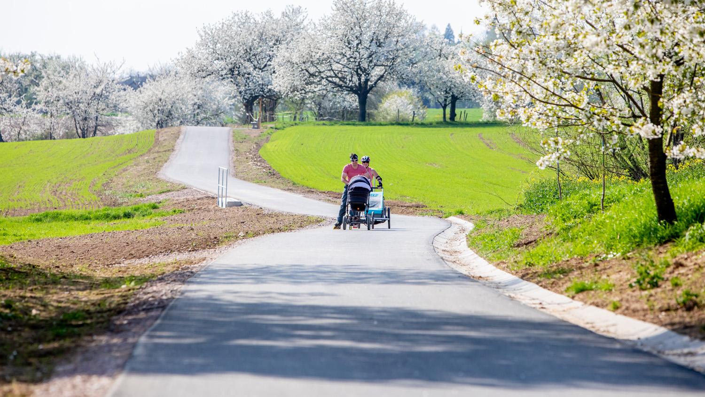 Stezka pro cyklisty a chodce Hrachovec - Chodovice